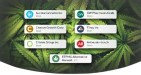 Trading e investimenti: il grande potenziale della marijuana